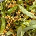 Plantes aromatiques sauvages sèches